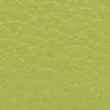 SL2181 - Verde Abacate