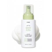 Sabonete Facial  Soon Jung Centella 6.5 Whip Cleanser - Etude House