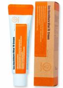 Tratamento Sea Buckthorn Vital 70 Cream - Purito