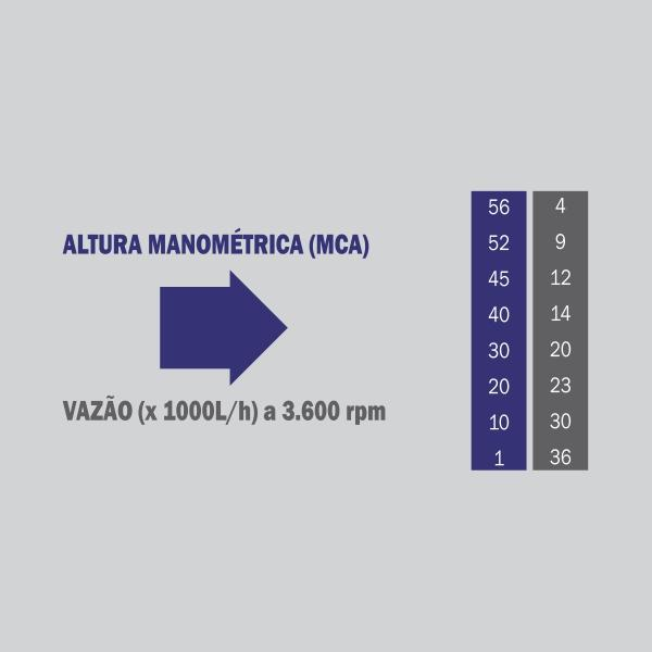 Motobomba Buffalo BFD 2.1/2x2 Centrifuga (m 7.0cv) Part. Manual 70717 (a Diesel)