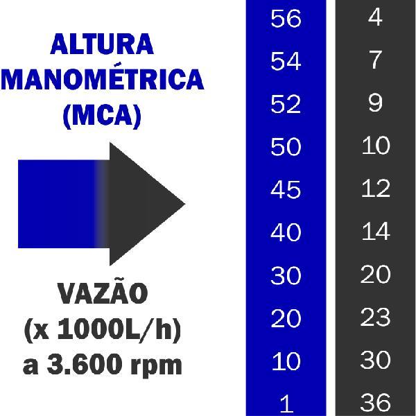 Motobomba Buffalo BFG 2.1/2x2 Centrifuga Part. Manual 60619 (a Gasolina)