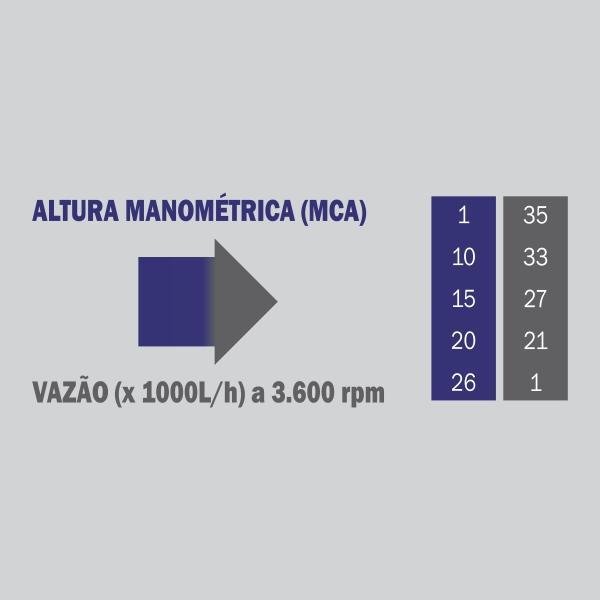 Motobomba Buffalo BFG 2x2 S Auto Escorvante Part. Manual 60721 (a Gasolina)