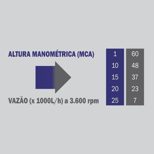 Motobomba Buffalo BFG 3x3 S Auto Escorvante Part. Manual 60722 (a Gasolina)