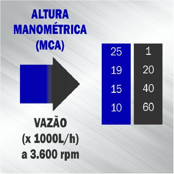 Motobomba Buffalo BFG 3 SP Auto Escorvante (m 7.0cv master) Part. Manual 60727 (a Gasolina)