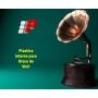 Plástico PE Vinil Interno 31cm x 30,5cm Micra 0,05 com 100 unidades