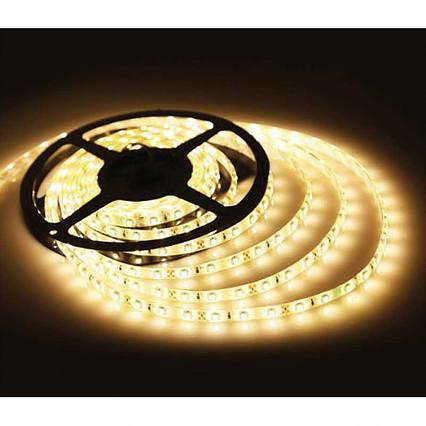 Fita LED 12V 3528 24W C/5 Metros IP65 - Resistente à água  - Giamar