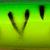64 Yara