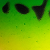 Verde Lima  Amarelo e Laranja Fosco