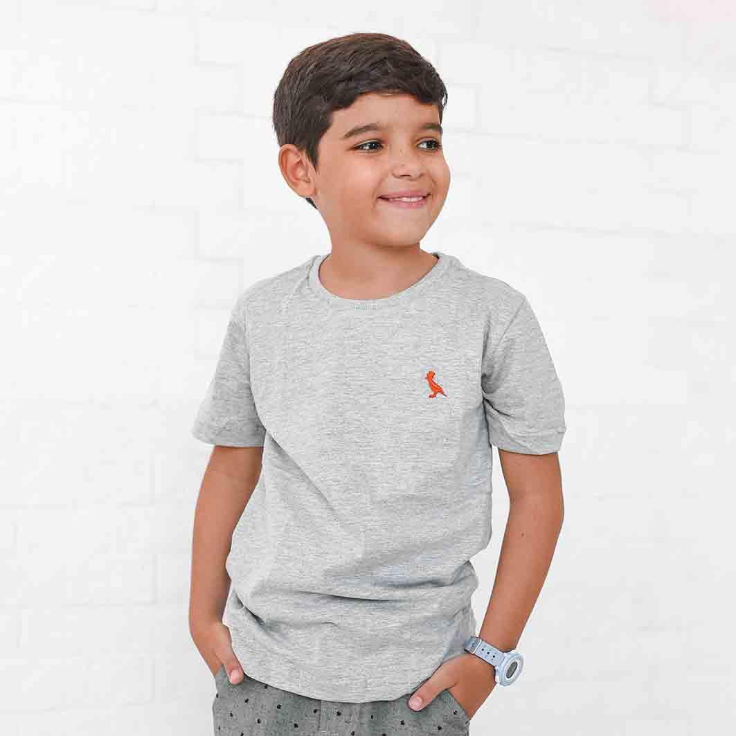 Camiseta Infanto-Juvenil Cinza  - Kactoos