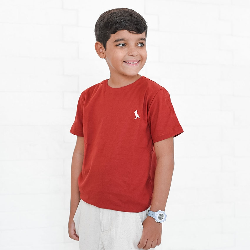 Camiseta Infanto-Juvenil Marrom  - Kactoos