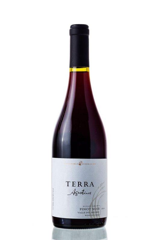 Vinho Tinto Agustinos Terra Pinot Noir 750ml  - ADEGA FARRET
