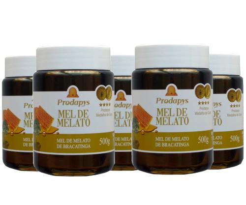 Mel Melato de Bracatinga 500g Kit com 5