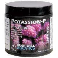 Brightwell Potássion-P Suplemento Em Pó De Potássio 600g