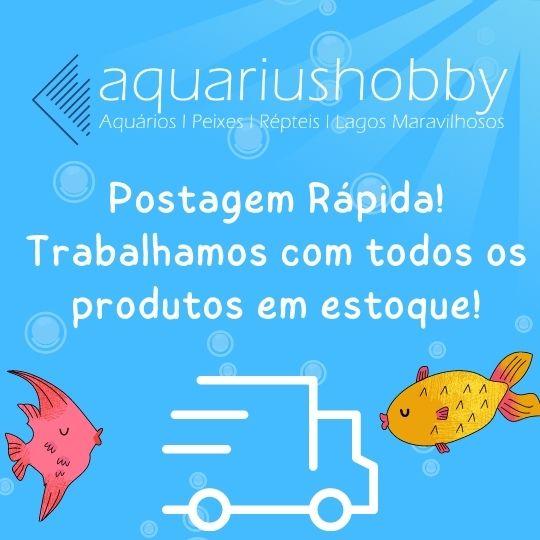 Criadeira Maternidade Para Peixes Com Tela Boyu Nb 3201