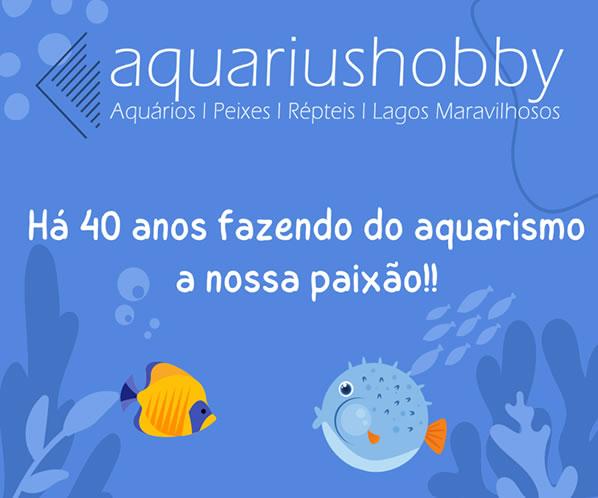 Cubos Spot Led Submerso P/ Lagos 3,6W 40 LEDS (AZUL)