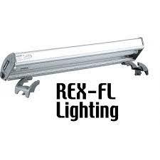 Dymax Luminária T8 Rex-Fl (1X 30W) 90cm 110V Luz Rosa