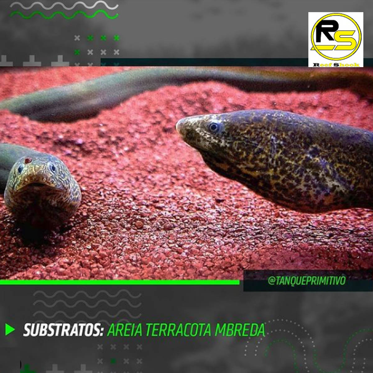 Areia Terracota Mbreda Pote 6kg Substrato para Aquarios