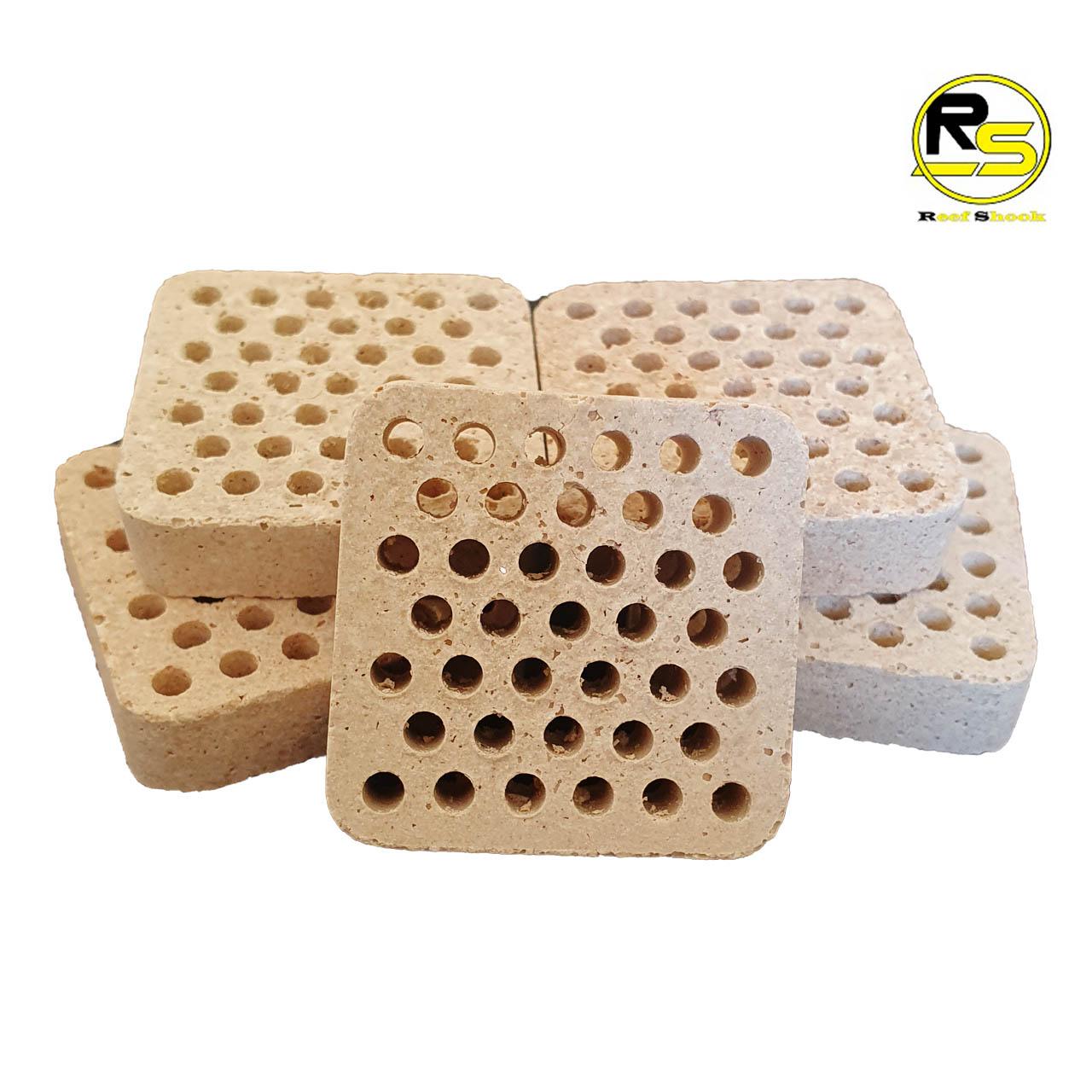 Base para Coral em Ceramica com Furos 3,6 x 3,6 x 1 cm kit 20 unidades