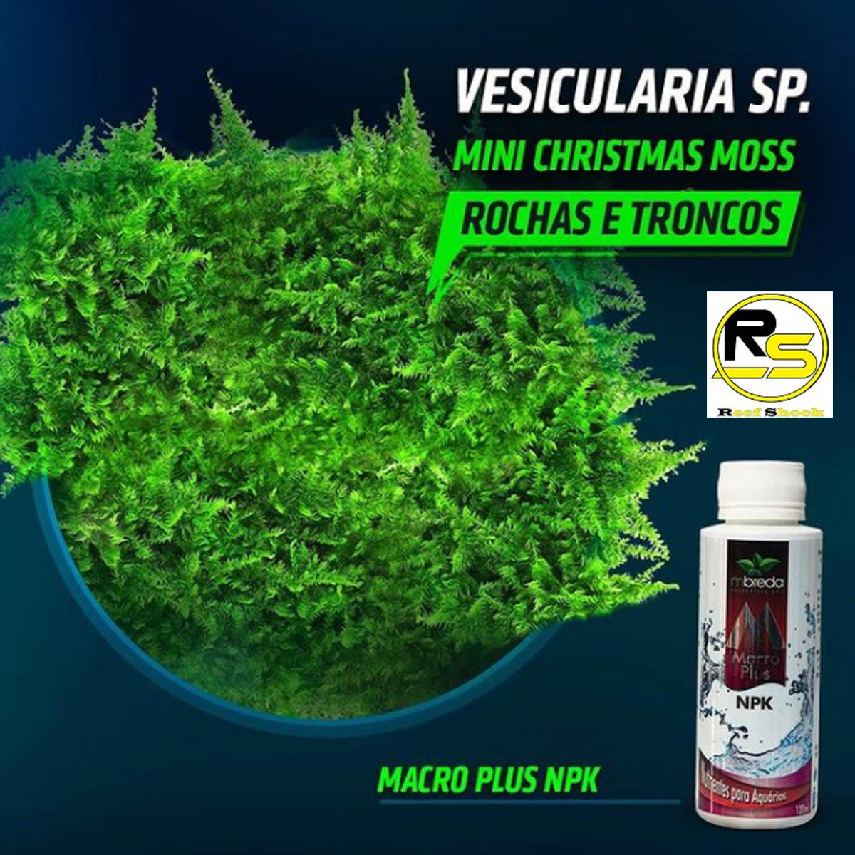 Mbreda Macroplus NPK 120ml Fertilizante para Aquario Plantado