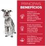 Ração Seca Hill's Science Diet para Cães Adultos 7+ Raças Minis e Pequenas