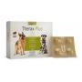 Vermífugo Oral Therax Plus para Cães - 4 Comprimidos