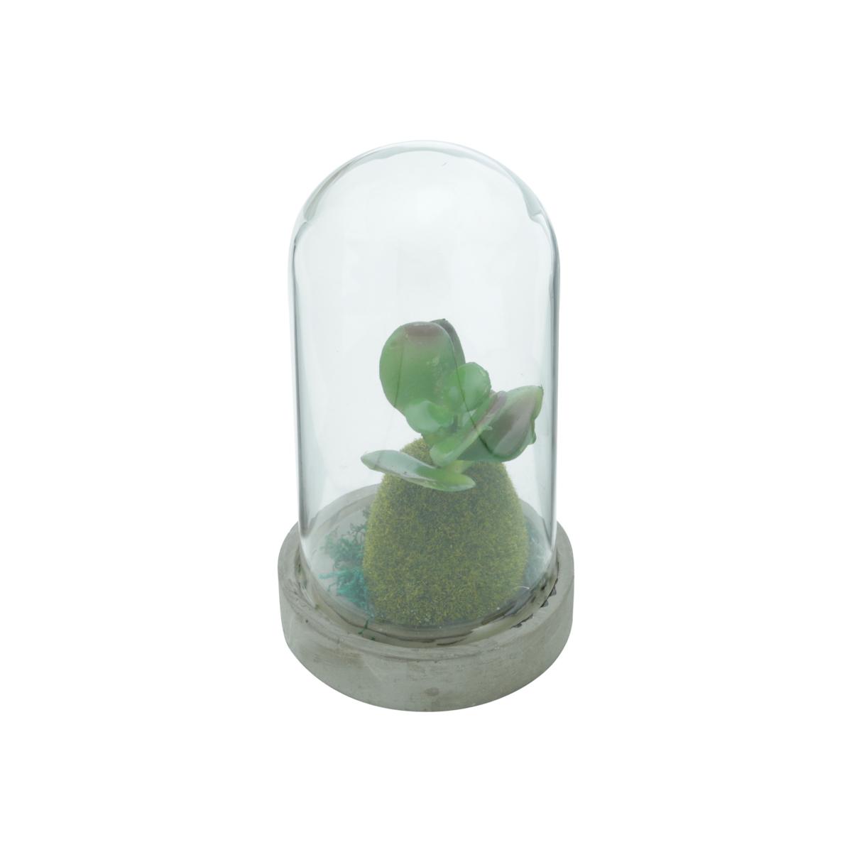 Vaso concreto redoma vidro Simple Plants Jade 9x16,8cm Urban
