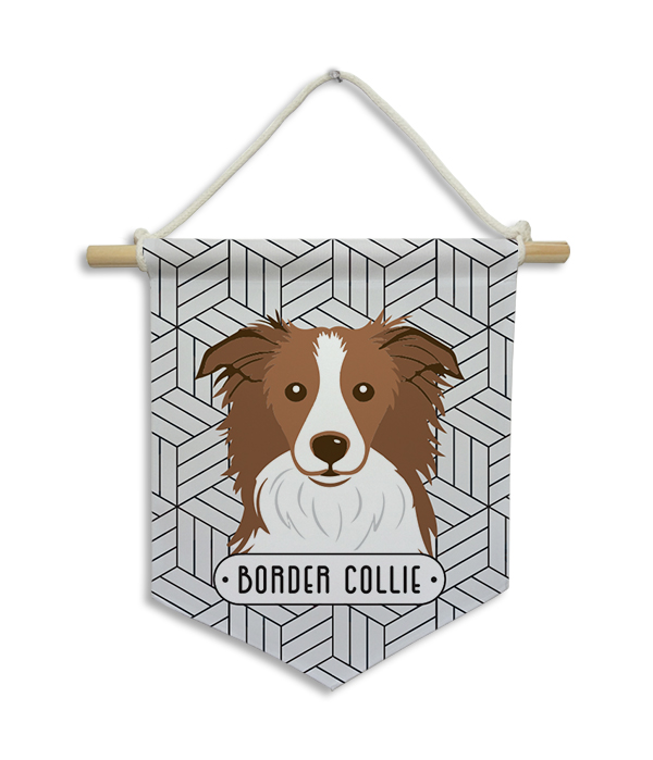 Flâmula | Border Collie