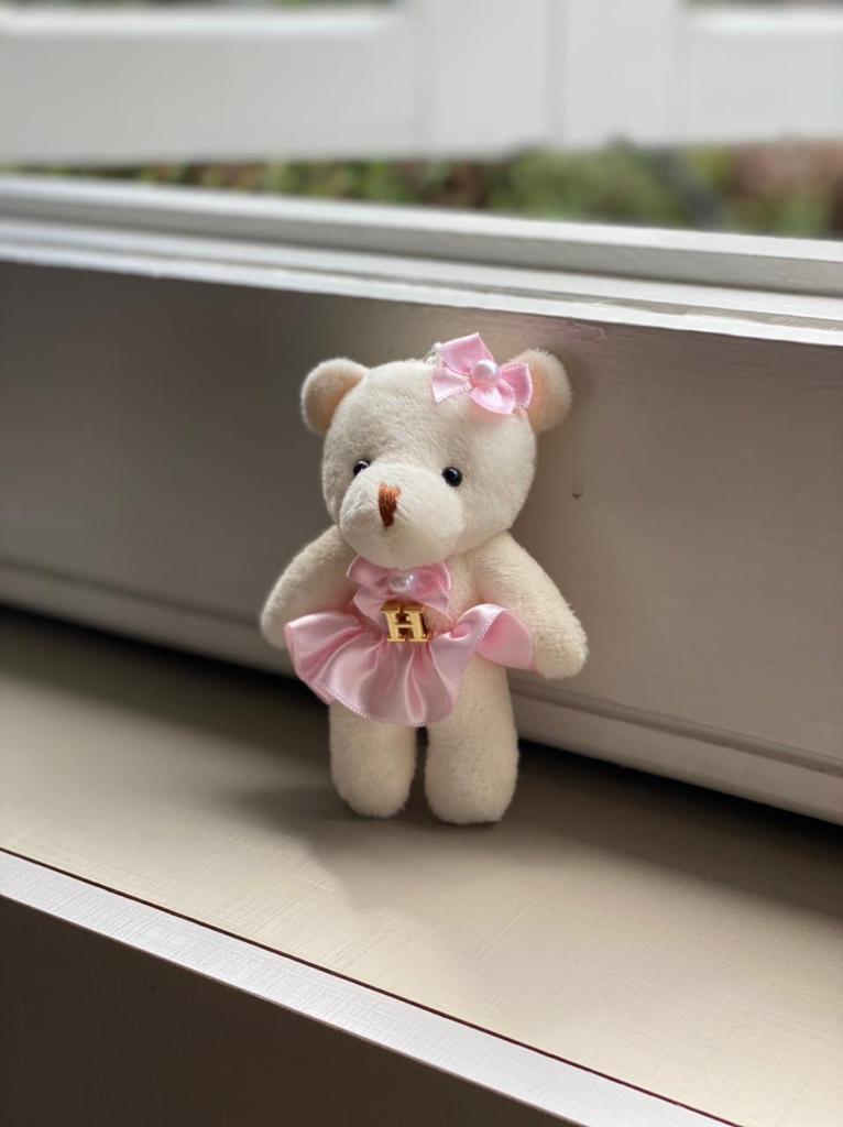 Acessórios-  Ursinhos em Pelúcia Personalizado (ROSA)