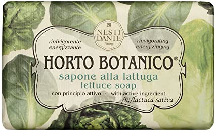 HORTO BOTANICO ALFACE 250G NESTI DANTE