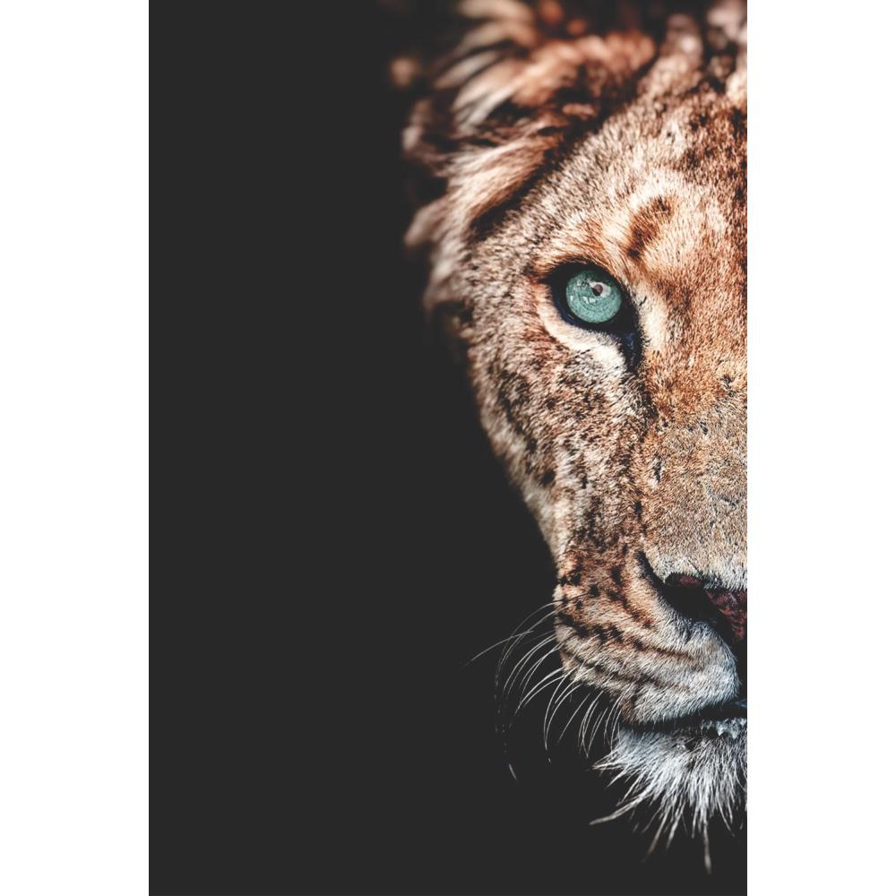 Quadro Decorativo Face Leão