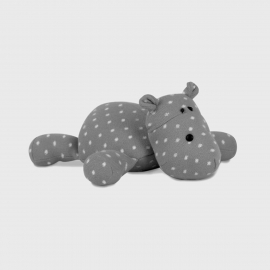 Hipopótamo deitado | Rian Tricot