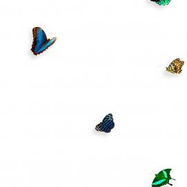 Painel borboleta multicolorido | Snijder E Co