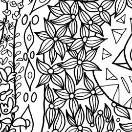 Papel de parede Amazônia fantástica    Marcelo Rosenbaum