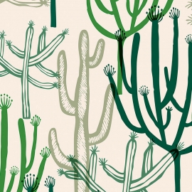 Papel de parede mandacaru | Joana Lira