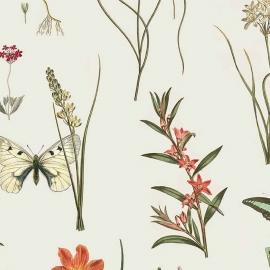Papel de parede pétalas e asas | Flo