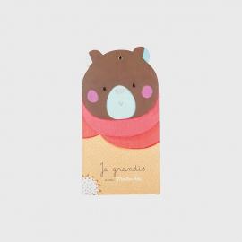 Régua de Crescimento - Les Jolis Urso