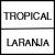 TROPICAL/LARANJA