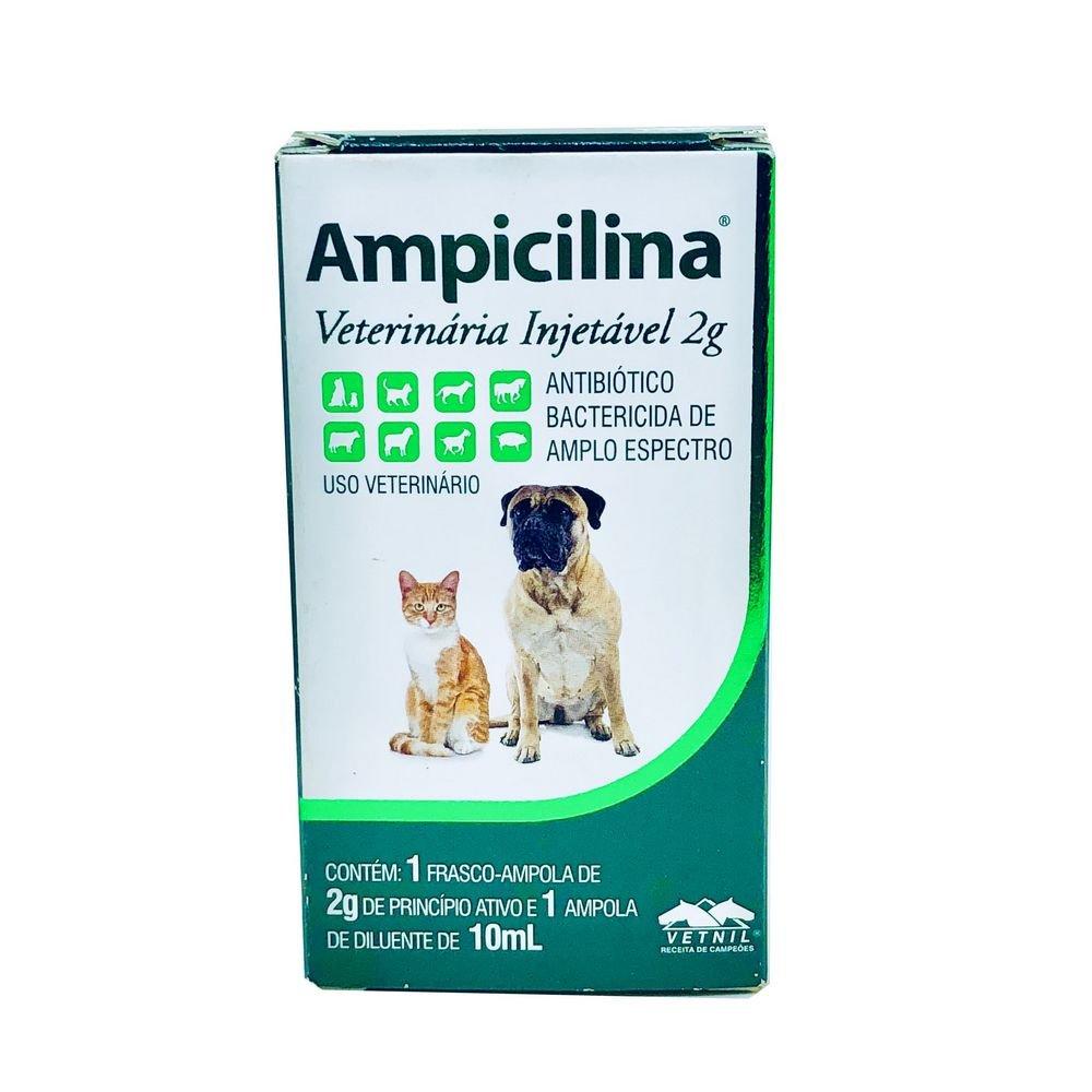 Ampicilina Veterinária Injetável 2 g Vetnil