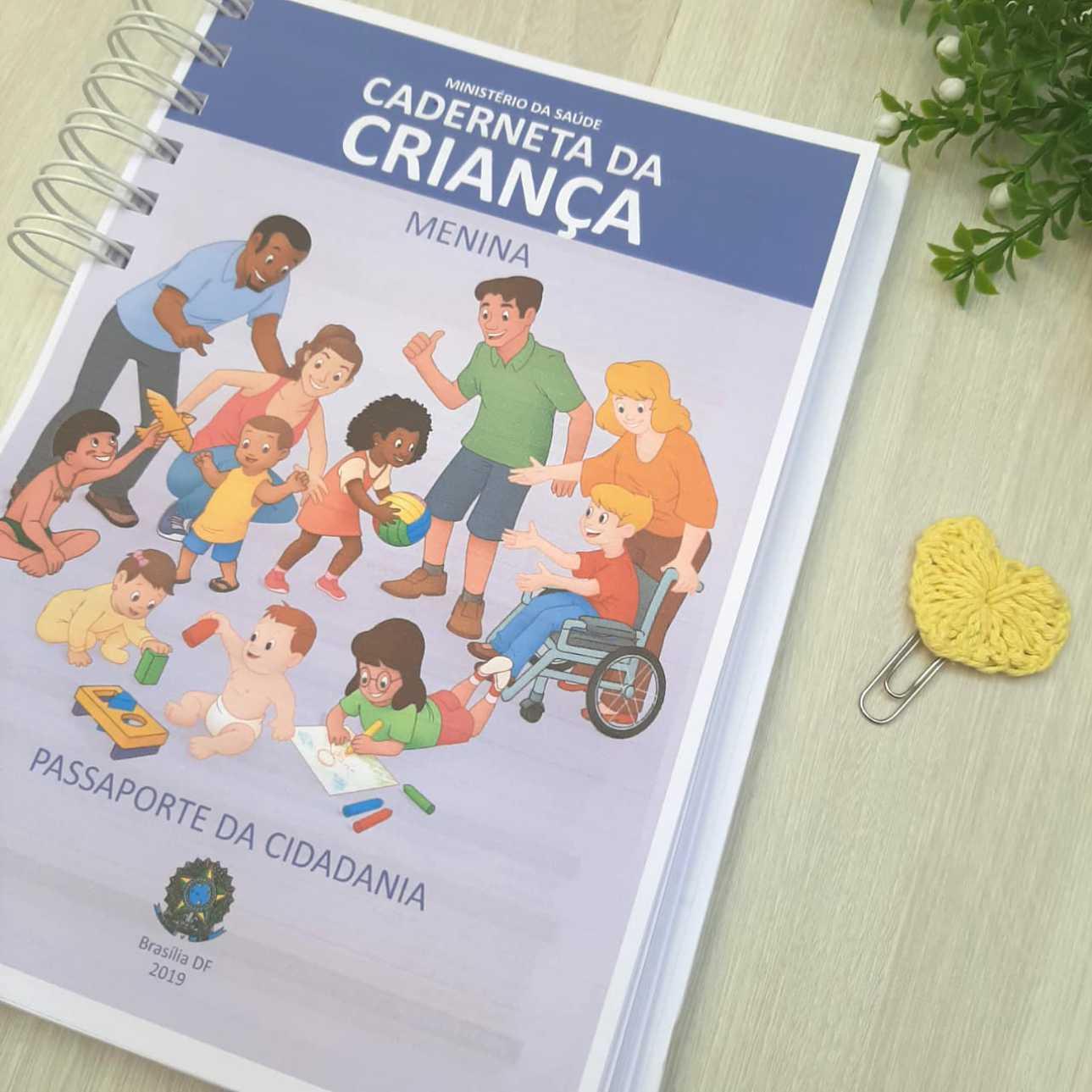 Caderneta de Saúde Rosê