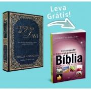 Combo COMPRE  O Tesouro de Davi  e  GANHE  Como Entender os Textos Mais Polêmicos da Bíblia