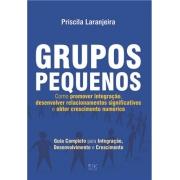 Grupos Pequenos-Como promover integração, desenvolver relacionamentos significativos e crescimento numérico - Priscila Laranjeira