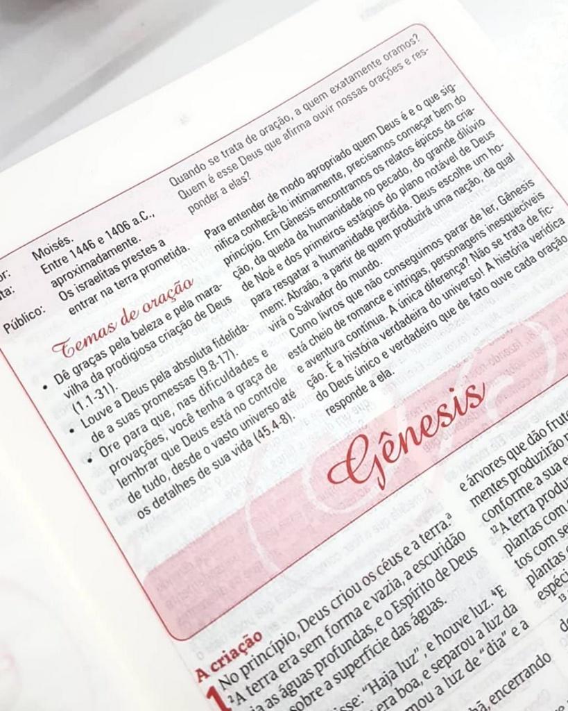 A BÍBLIA DA MULHER QUE ORA CAPA LUXO - LETRA NORMAL