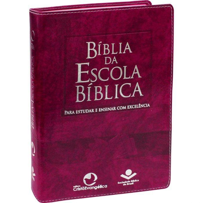 BÍBLIA DA ESCOLA BÍBLICA   CAPA PINK