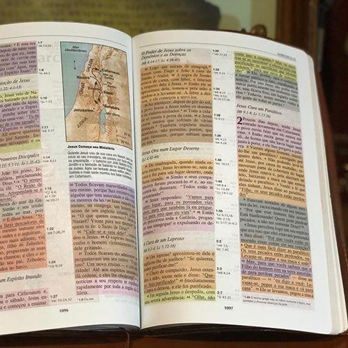 Bíblia de Estudo Colorida - NVI - Rosa