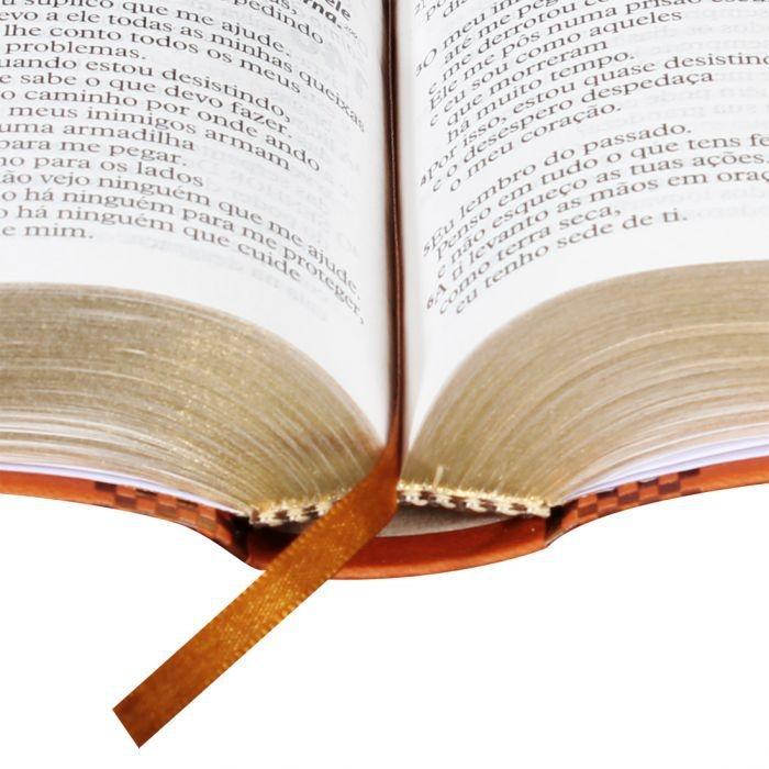 BÍBLIA SAGRADA LETRA GIGANTE Marrom Claro