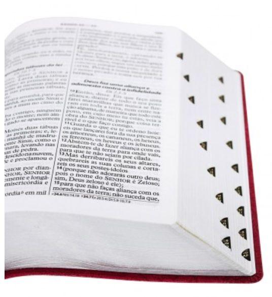 Bíblia Sagrada Letra Gigante SBB Almeida Revista e Atualizada PINK