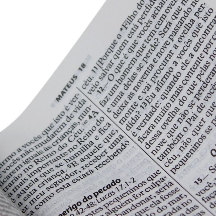 BÍBLIA SAGRADA LETRA GRANDE NTLH MARROM NOBRE