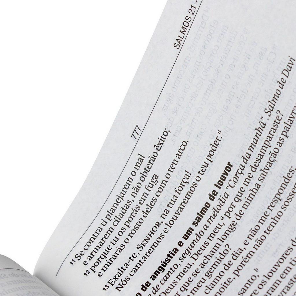 BÍBLIA SAGRADA Nova Almeida Atualizada - Letra Gigante - Preta Nobre