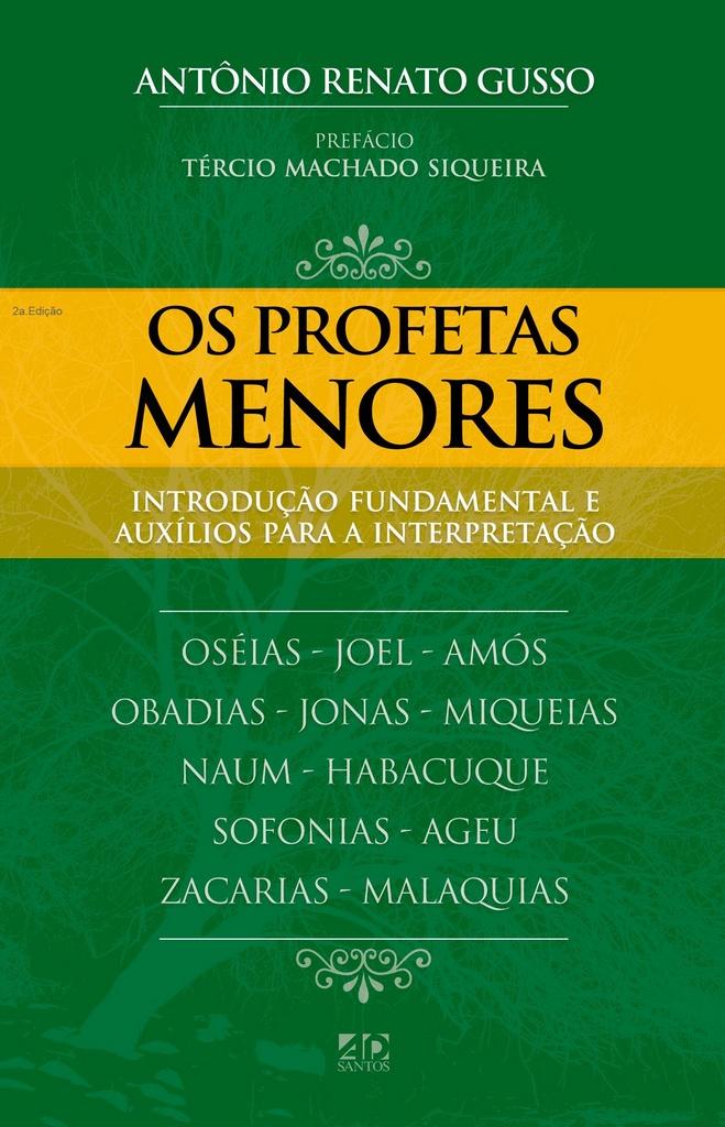 BOX A.R.GUSSO   Introdução Fundamental e Auxílios para a boa interpretação   5 livros
