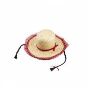 Chapéu de Palha Caipira Com Trança
